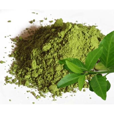 Экстракт зеленого чая 10 г