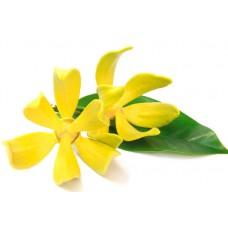 Гидролат (цветочная вода) Иланг-иланг, 100 мл