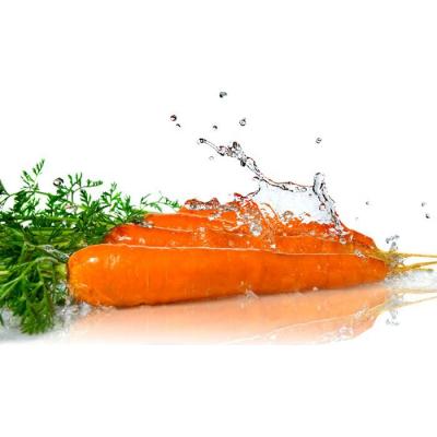 Гидролат Моркови  (плоды, ботва) , 100 мл