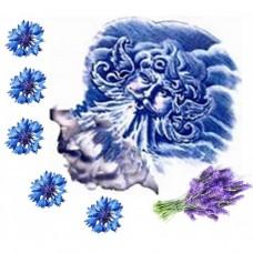 Гидролат Синие ветры Тавриды (василек+лаванда), 100 мл