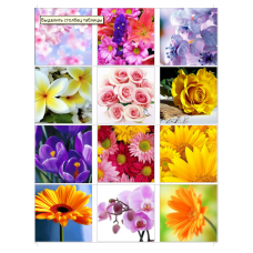 Картинки водорастворимые лист А4 Цветы
