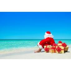 """Отдушка """"Рождество на острове"""" (реплика США), 10 мл"""