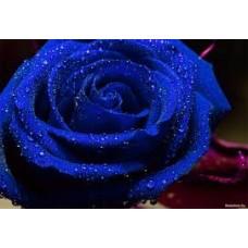 Жирорастворимый краситель Синий 10 г